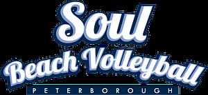 SBV-Big-Logo